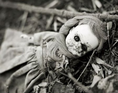 Краткое содержание Е. Носов «Кукла»